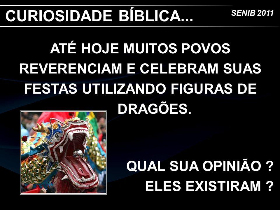 CURIOSIDADE BÍBLICA... ATÉ HOJE MUITOS POVOS REVERENCIAM E CELEBRAM SUAS FESTAS UTILIZANDO FIGURAS DE DRAGÕES.