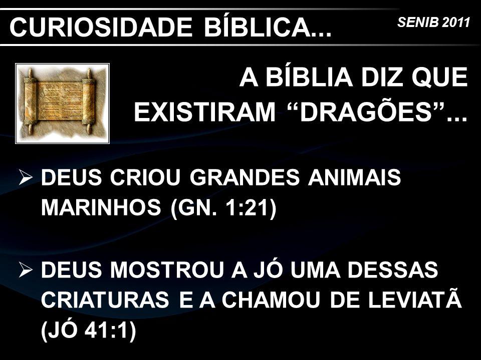 A BÍBLIA DIZ QUE EXISTIRAM DRAGÕES ...