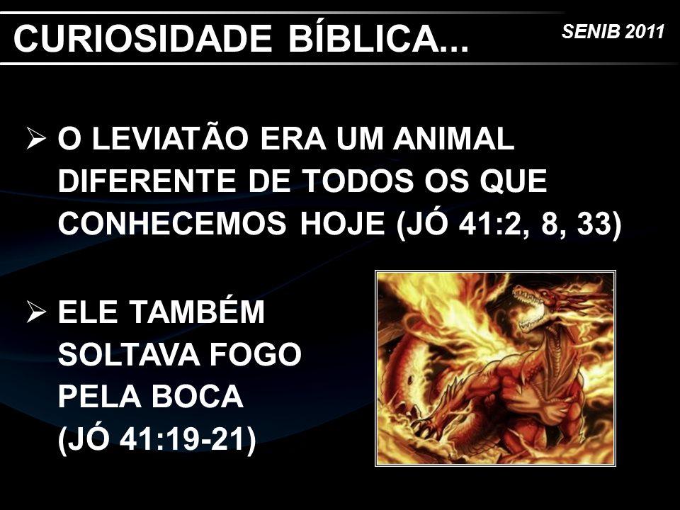 CURIOSIDADE BÍBLICA... O LEVIATÃO ERA UM ANIMAL DIFERENTE DE TODOS OS QUE CONHECEMOS HOJE (JÓ 41:2, 8, 33)