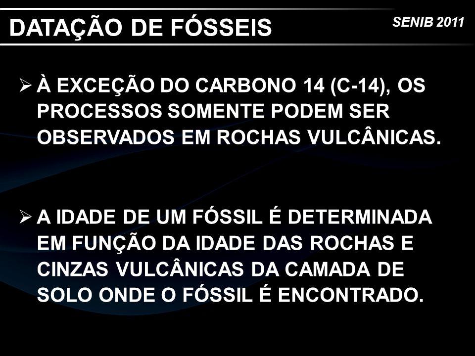 DATAÇÃO DE FÓSSEIS À EXCEÇÃO DO CARBONO 14 (C-14), OS PROCESSOS SOMENTE PODEM SER OBSERVADOS EM ROCHAS VULCÂNICAS.
