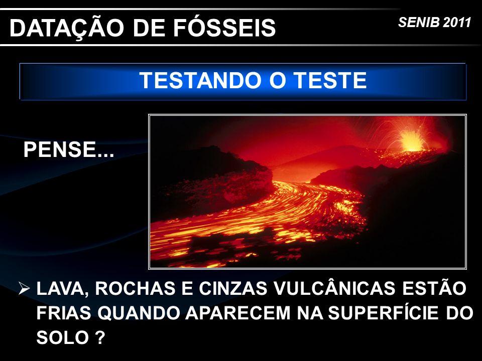 DATAÇÃO DE FÓSSEIS TESTANDO O TESTE PENSE...