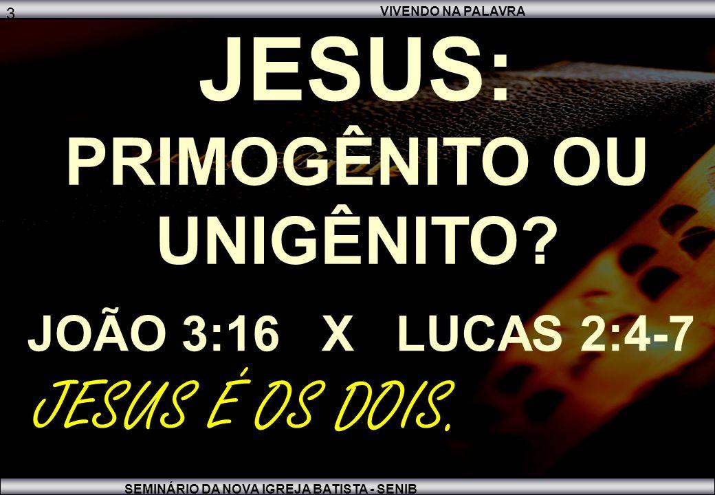 JESUS: PRIMOGÊNITO OU UNIGÊNITO