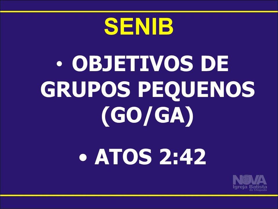 OBJETIVOS DE GRUPOS PEQUENOS (GO/GA)