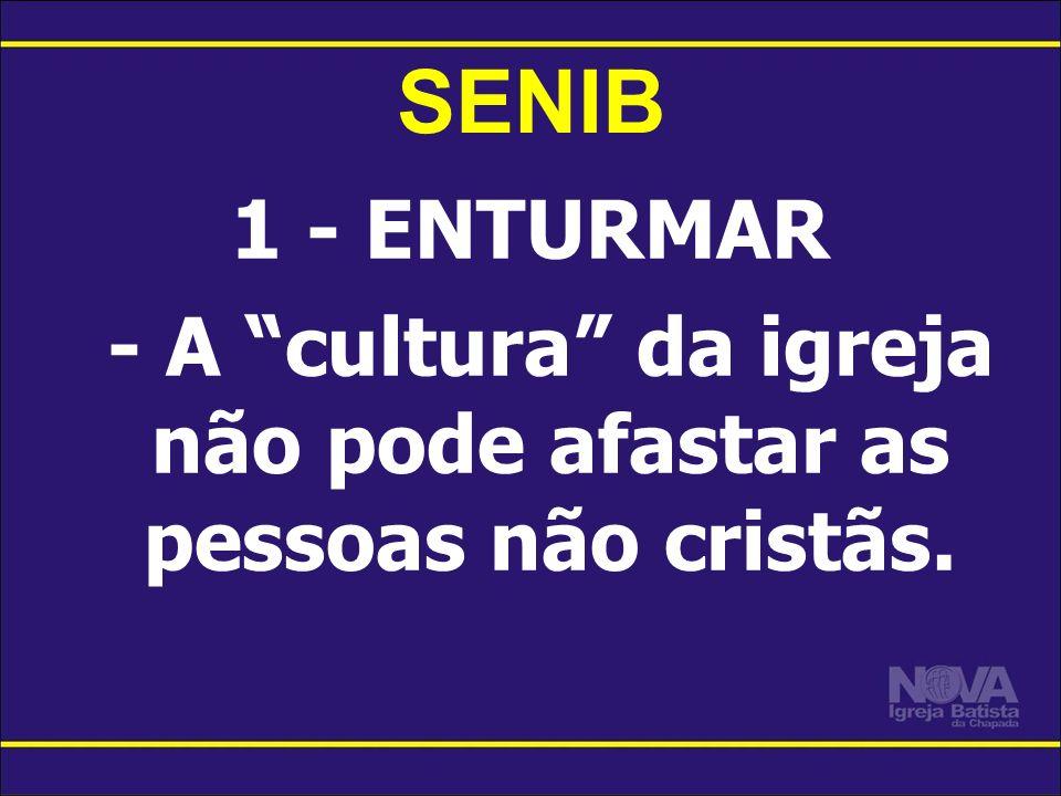 SENIB 1 - ENTURMAR - A cultura da igreja não pode afastar as pessoas não cristãs.