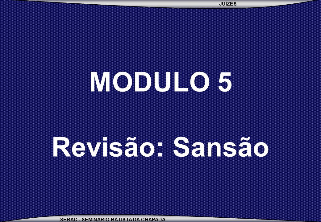 MODULO 5 Revisão: Sansão