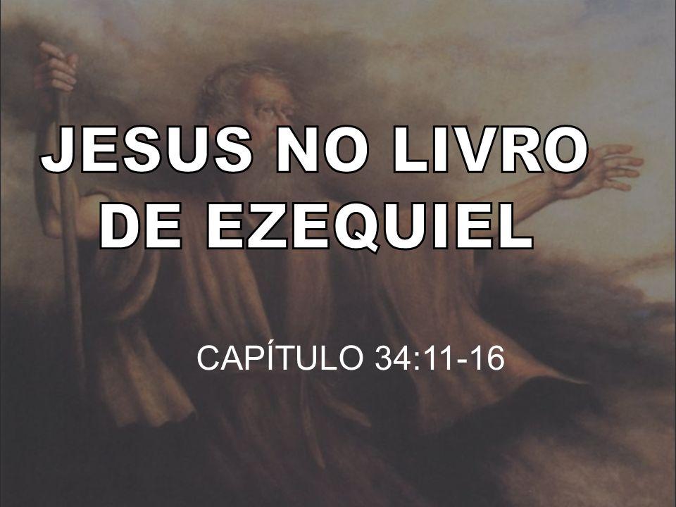 JESUS NO LIVRO DE EZEQUIEL CAPÍTULO 34:11-16