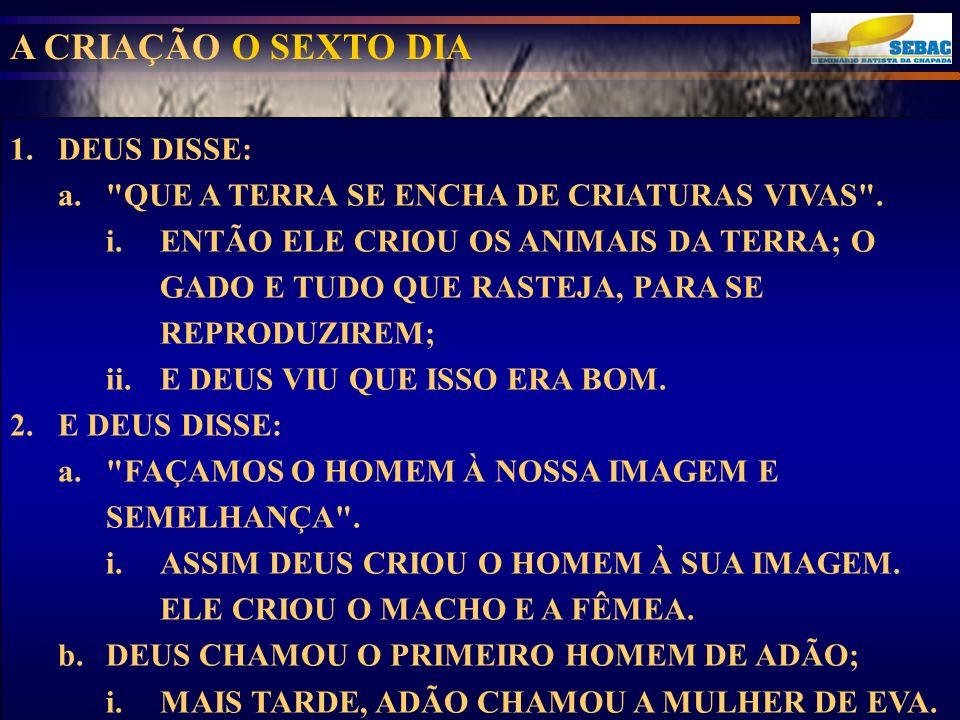 A CRIAÇÃO O SEXTO DIA DEUS DISSE: