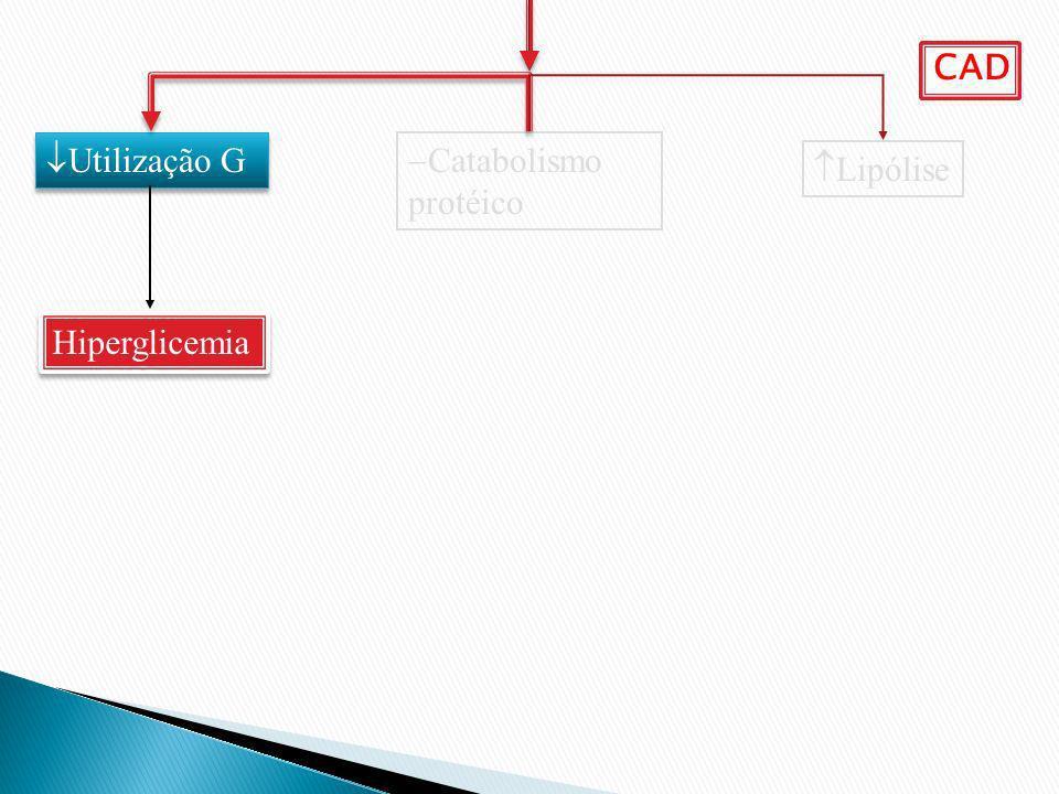 CAD Utilização G Catabolismo protéico Lipólise Hiperglicemia