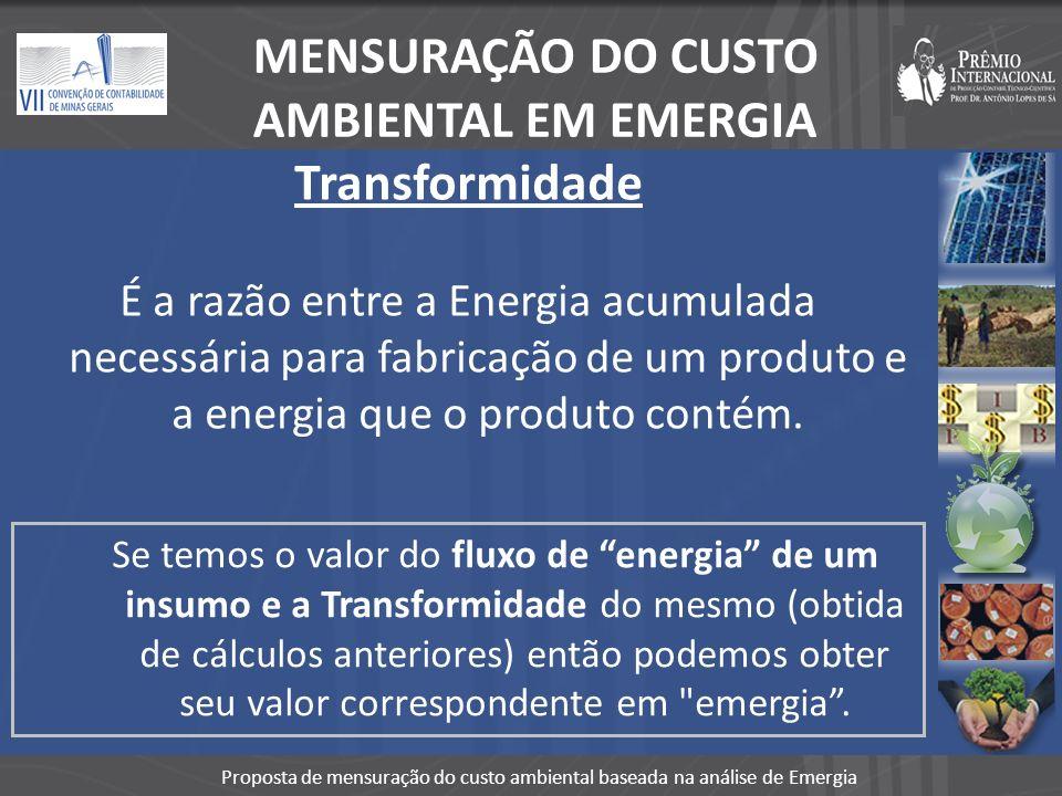 MENSURAÇÃO DO CUSTO AMBIENTAL EM EMERGIA