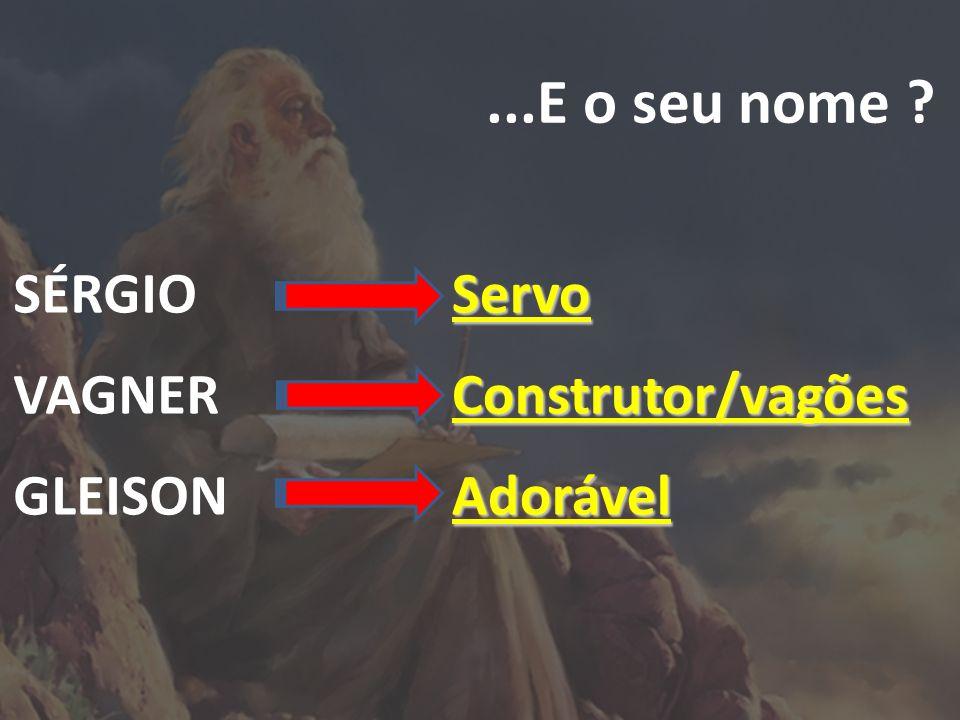 ...E o seu nome SÉRGIO VAGNER GLEISON Servo Construtor/vagões