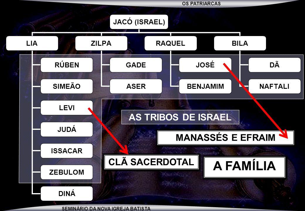 AS TRIBOS DE ISRAEL MANASSÉS E EFRAIM CLÃ SACERDOTAL A FAMÍLIA