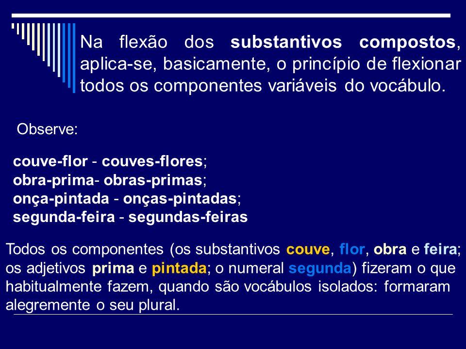 Na flexão dos substantivos compostos, aplica-se, basicamente, o princípio de flexionar todos os componentes variáveis do vocábulo.