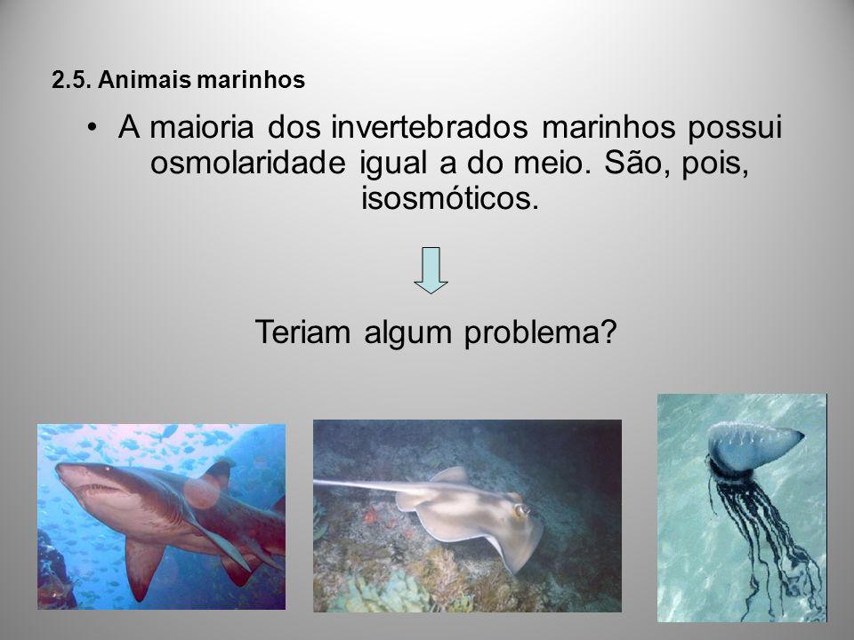 2.5. Animais marinhos A maioria dos invertebrados marinhos possui osmolaridade igual a do meio. São, pois, isosmóticos.