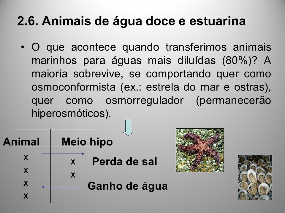 2.6. Animais de água doce e estuarina