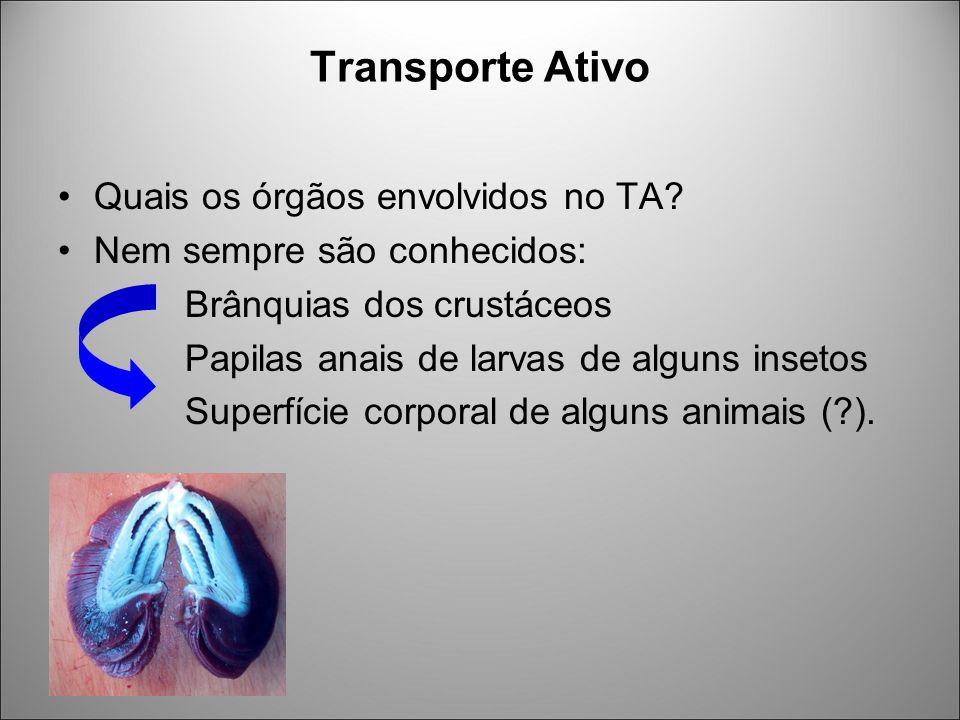 Transporte Ativo Quais os órgãos envolvidos no TA