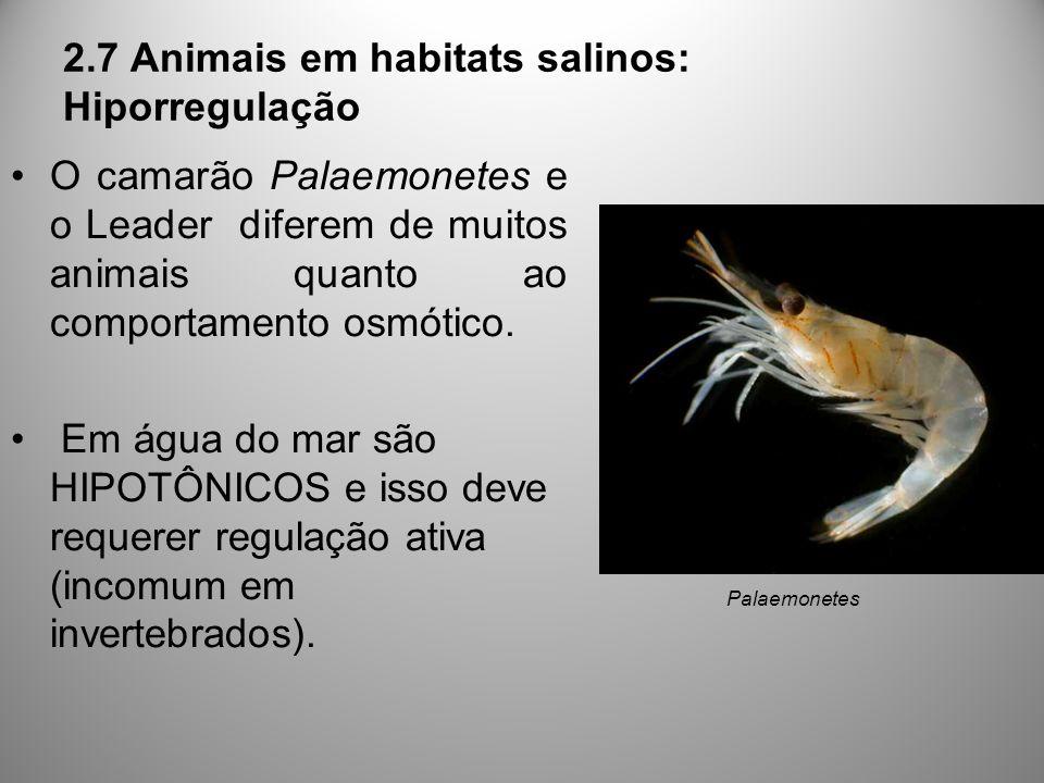2.7 Animais em habitats salinos: Hiporregulação