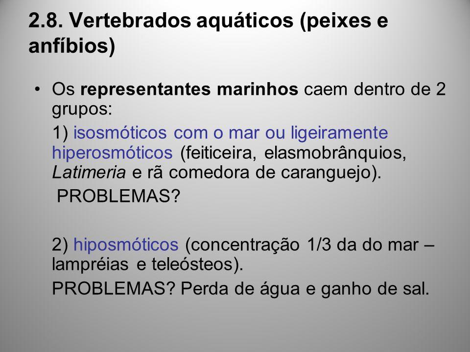 2.8. Vertebrados aquáticos (peixes e anfíbios)