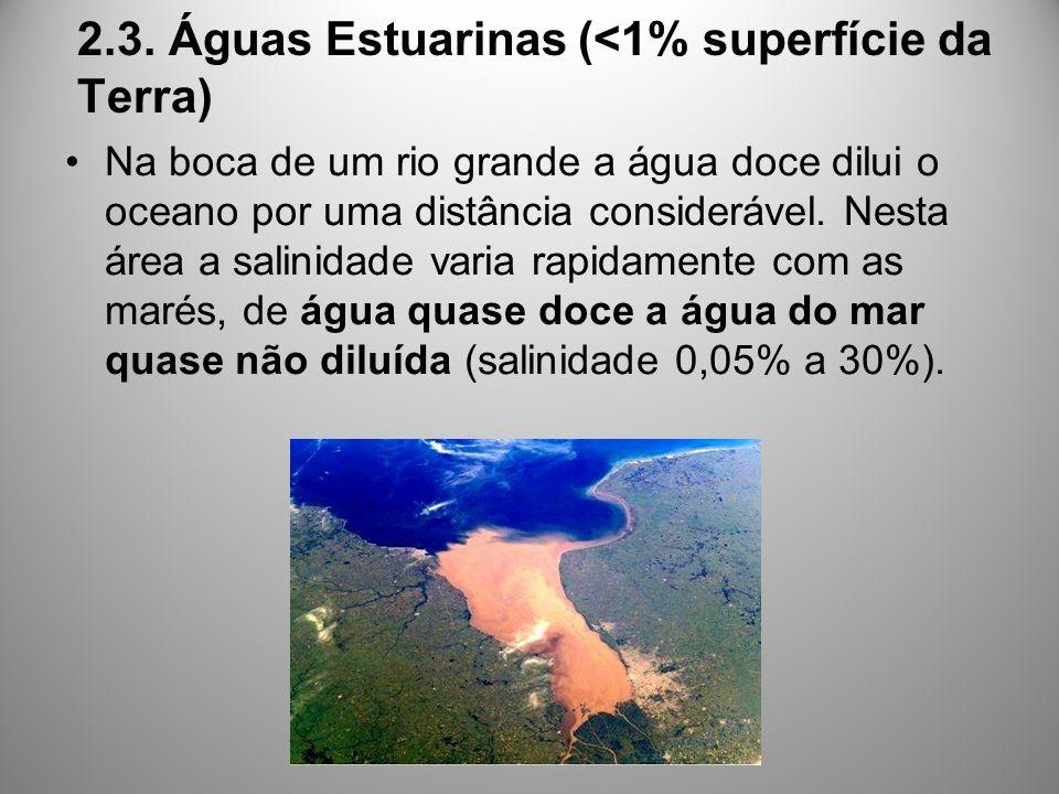 2.3. Águas Estuarinas (<1% superfície da Terra)