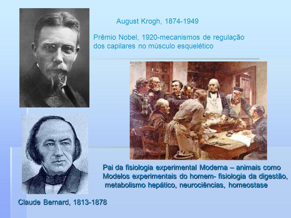 August Krogh, 1874-1949 Prêmio Nobel, 1920-mecanismos de regulação. dos capilares no músculo esquelético.