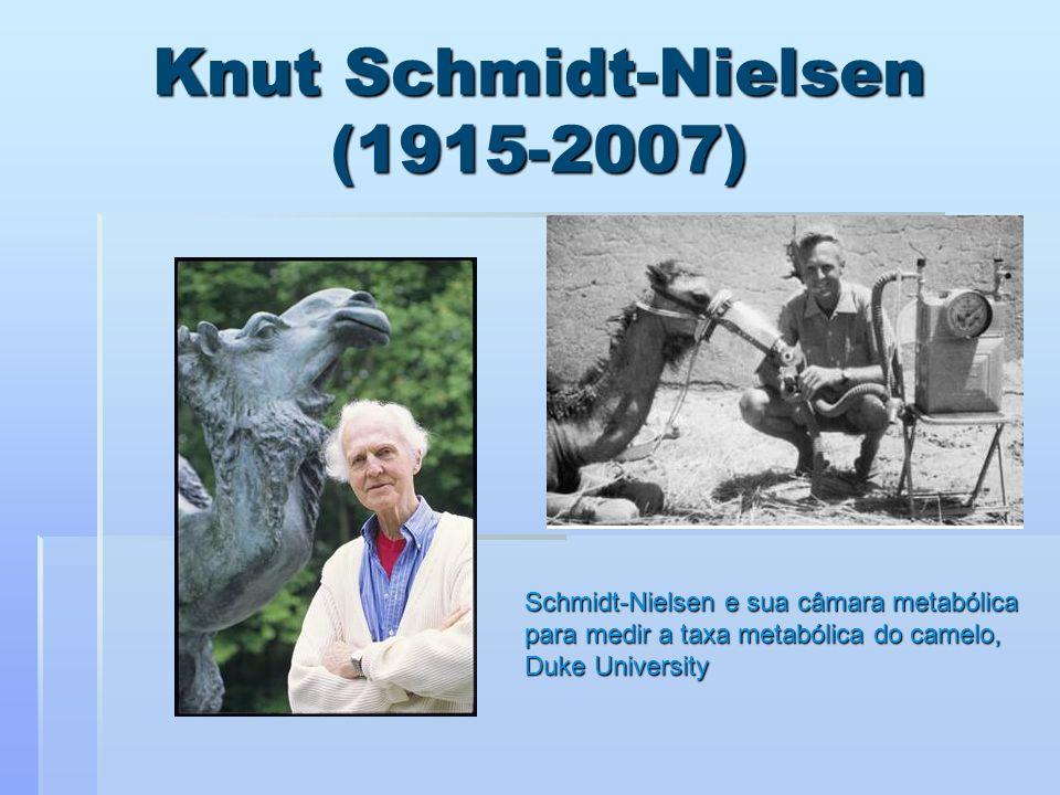 Knut Schmidt-Nielsen (1915-2007)