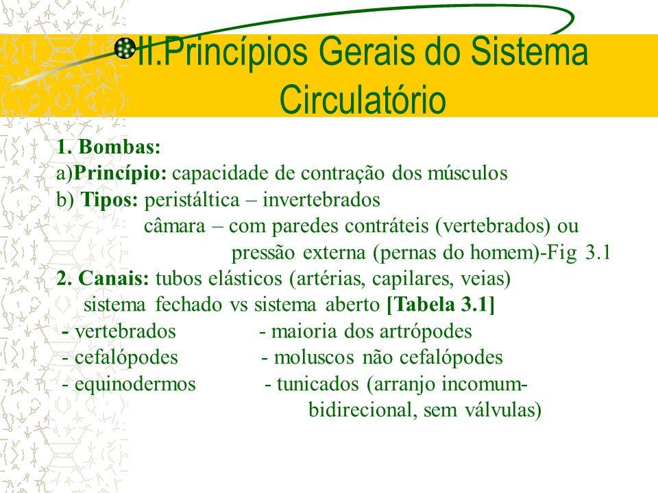 II.Princípios Gerais do Sistema Circulatório