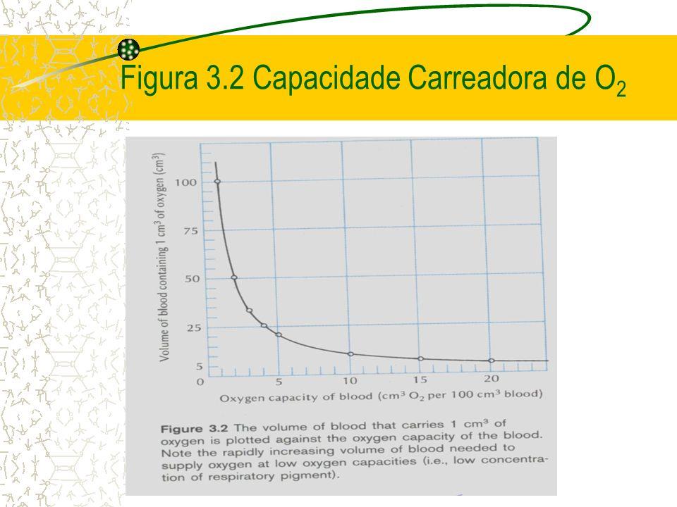 Figura 3.2 Capacidade Carreadora de O2