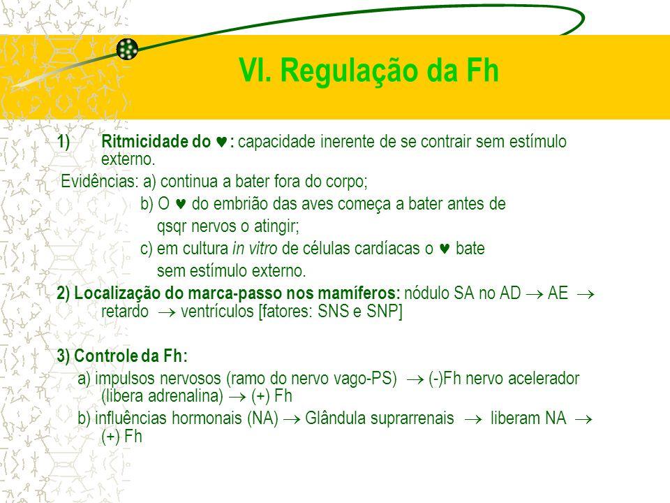 VI. Regulação da Fh Ritmicidade do : capacidade inerente de se contrair sem estímulo externo. Evidências: a) continua a bater fora do corpo;