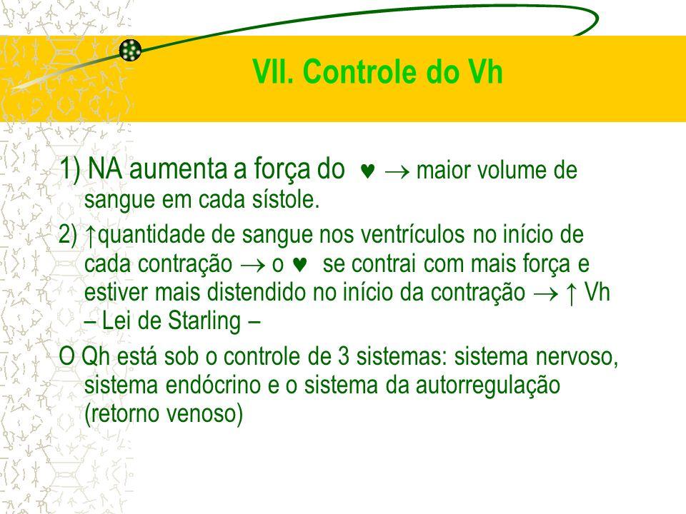 VII. Controle do Vh 1) NA aumenta a força do   maior volume de sangue em cada sístole.