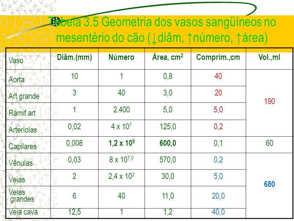 Tabela 3.5 Geometria dos vasos sangüíneos no mesentério do cão (↓diâm, ↑número, ↑área)