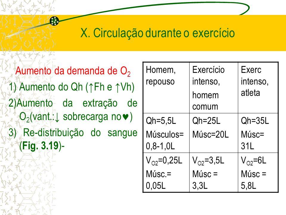 X. Circulação durante o exercício