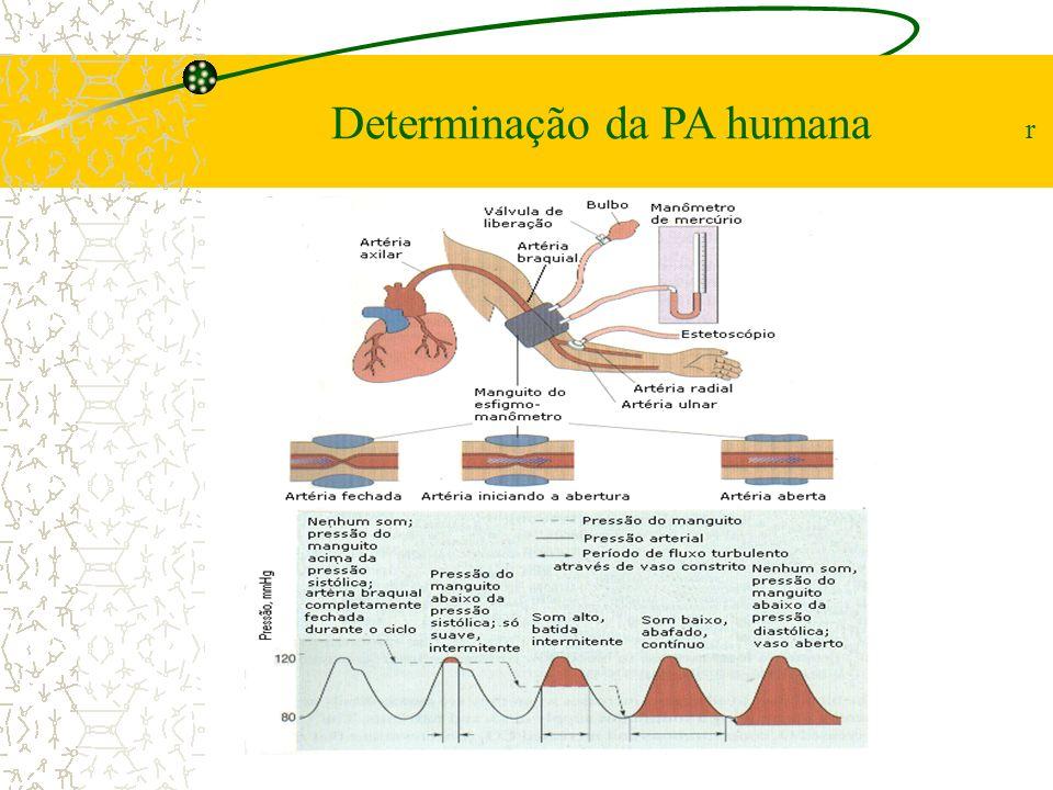 Determinação da PA humana r