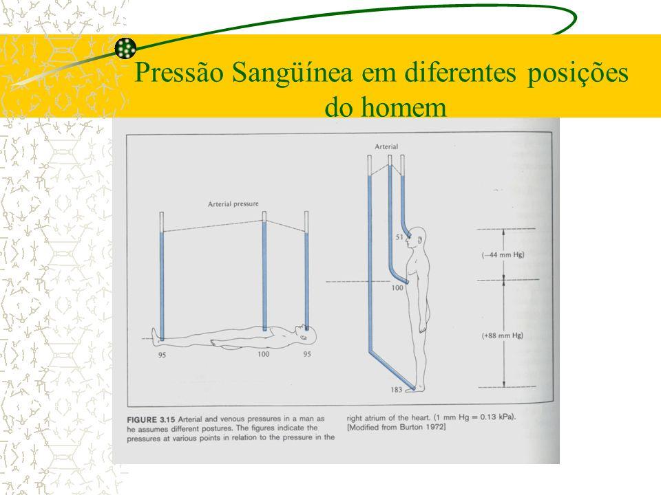 Pressão Sangüínea em diferentes posições
