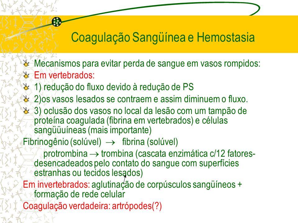 Coagulação Sangüínea e Hemostasia