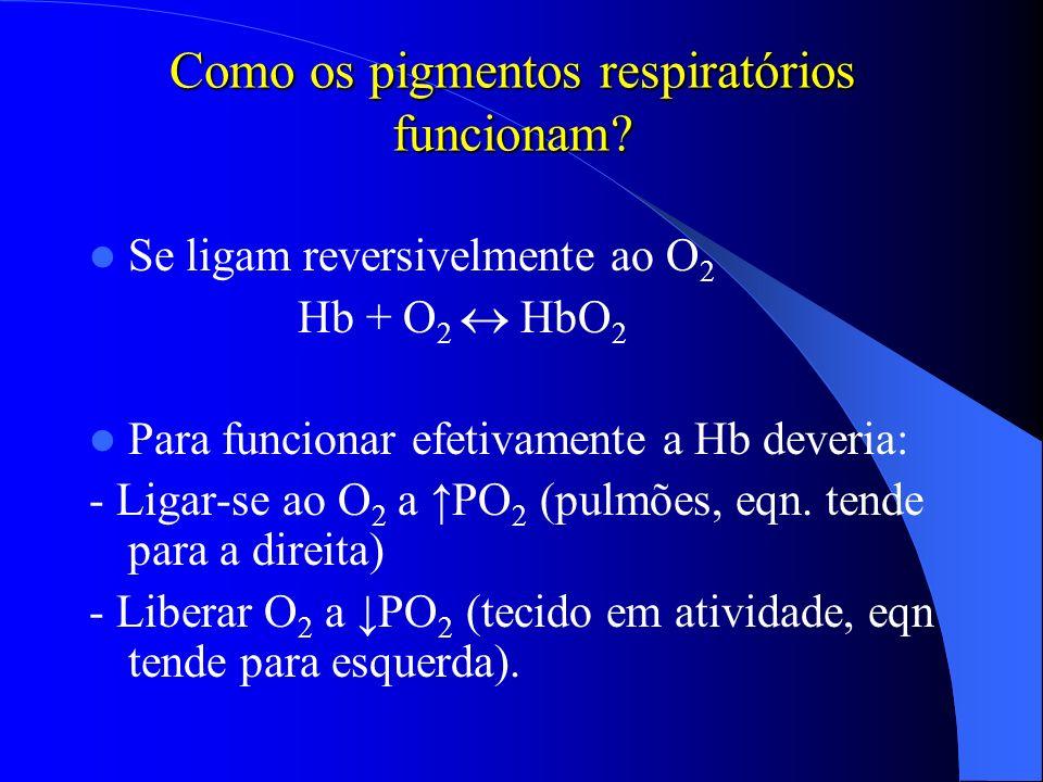 Como os pigmentos respiratórios funcionam