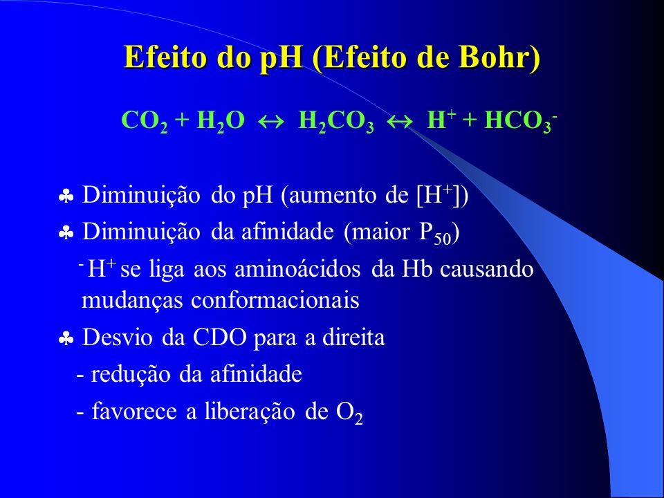 Efeito do pH (Efeito de Bohr)