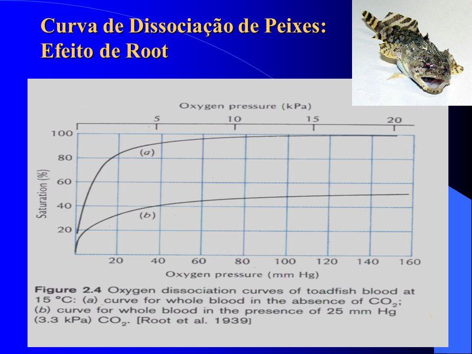 Curva de Dissociação de Peixes: Efeito de Root