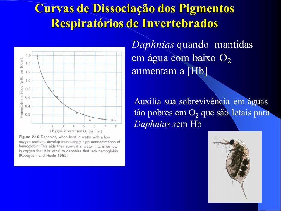 Curvas de Dissociação dos Pigmentos Respiratórios de Invertebrados