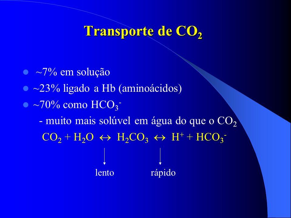 Transporte de CO2 ~7% em solução ~23% ligado a Hb (aminoácidos)