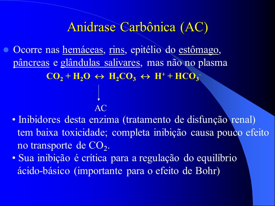 Anidrase Carbônica (AC)