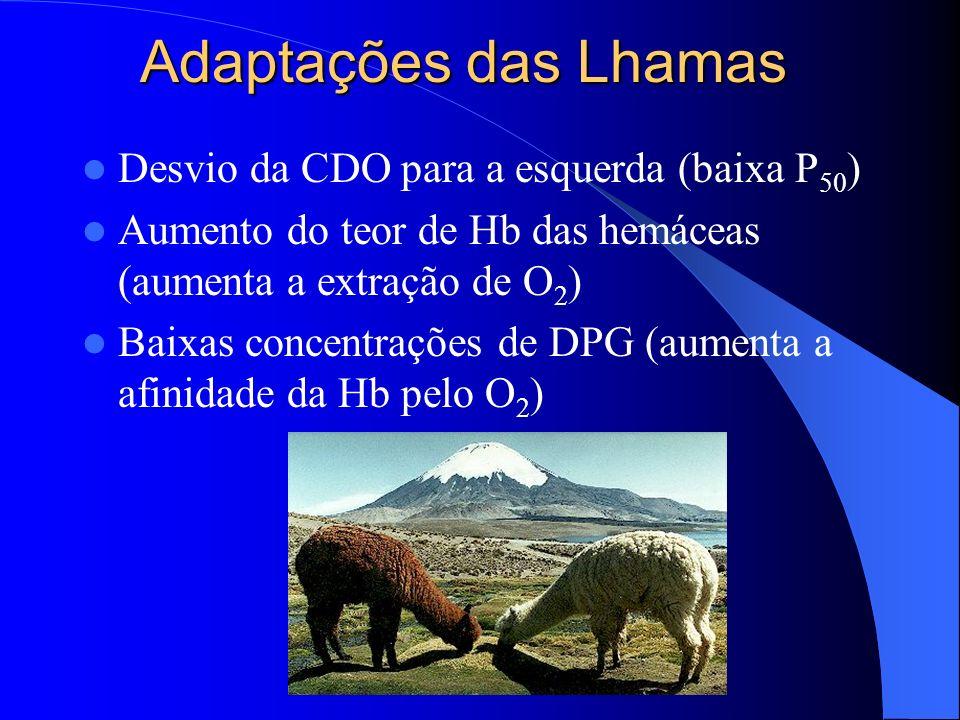 Adaptações das Lhamas Desvio da CDO para a esquerda (baixa P50)