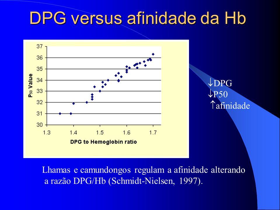 DPG versus afinidade da Hb