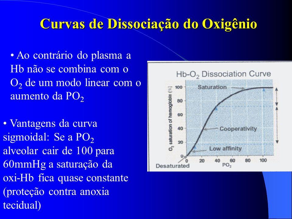 Curvas de Dissociação do Oxigênio
