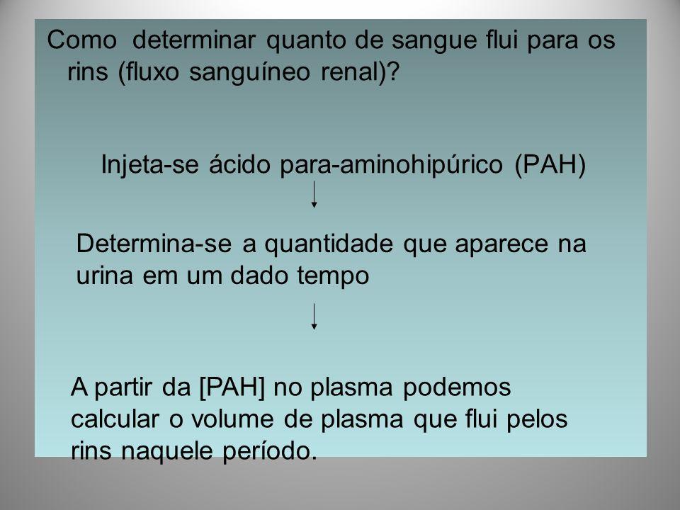 Injeta-se ácido para-aminohipúrico (PAH)