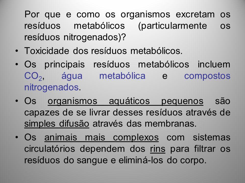 Toxicidade dos resíduos metabólicos.