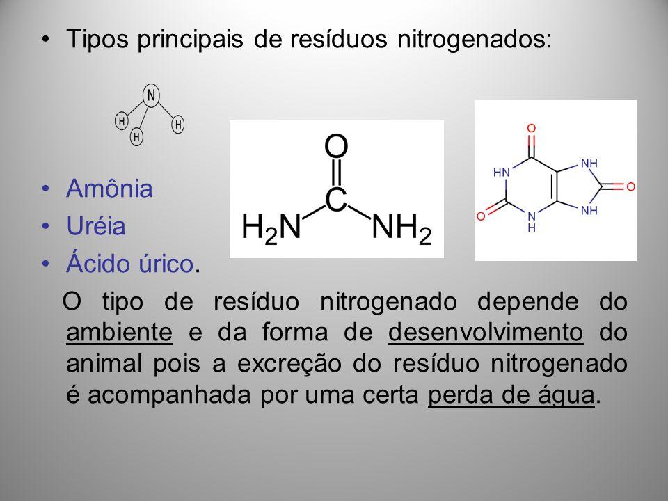 Tipos principais de resíduos nitrogenados: