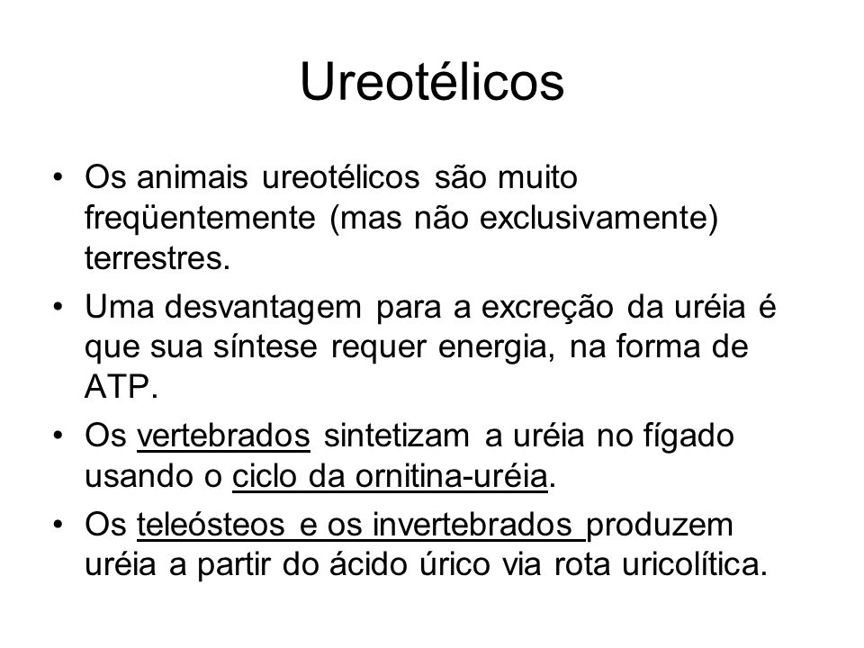 Ureotélicos Os animais ureotélicos são muito freqüentemente (mas não exclusivamente) terrestres.