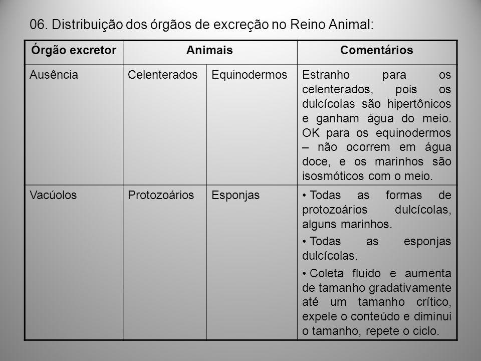 06. Distribuição dos órgãos de excreção no Reino Animal: