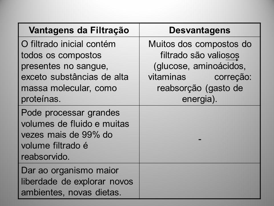 Vantagens da Filtração