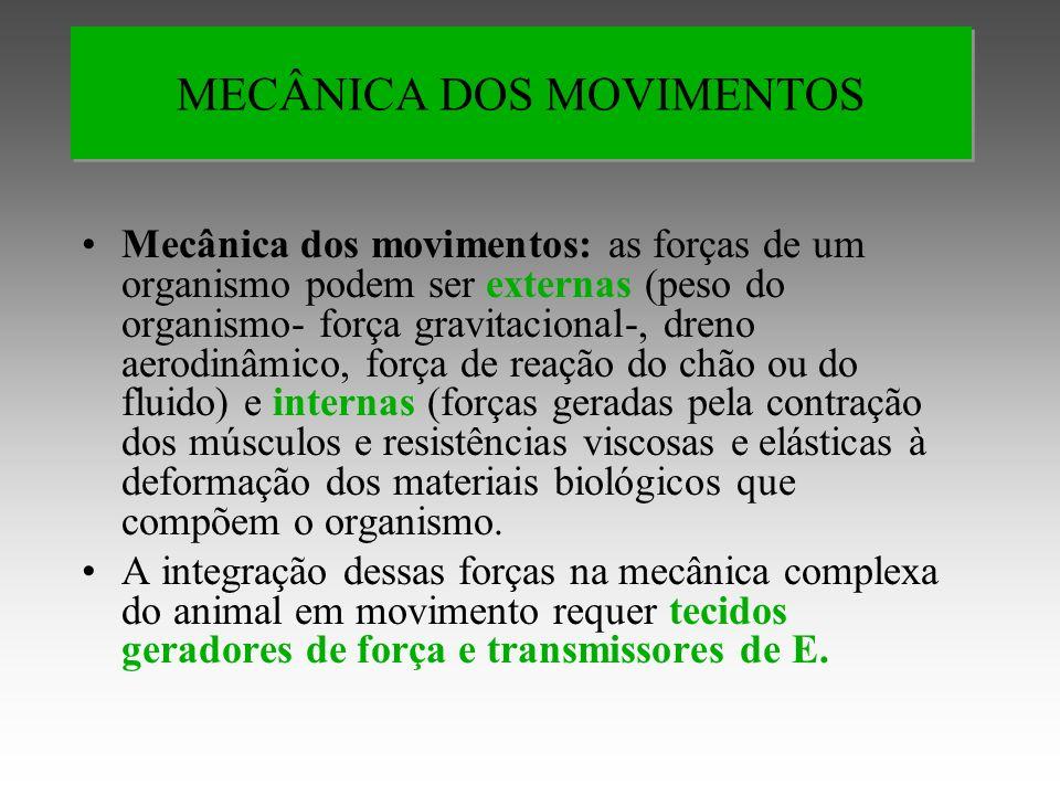 MECÂNICA DOS MOVIMENTOS