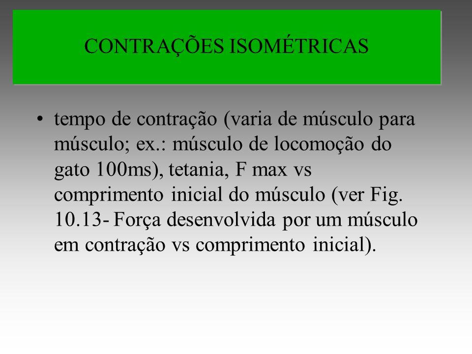 CONTRAÇÕES ISOMÉTRICAS